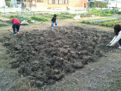 リアル農園はじめました!