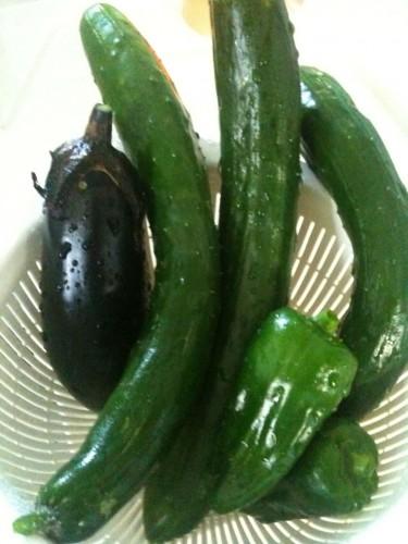 家庭菜園:ようやく収穫し始めました!
