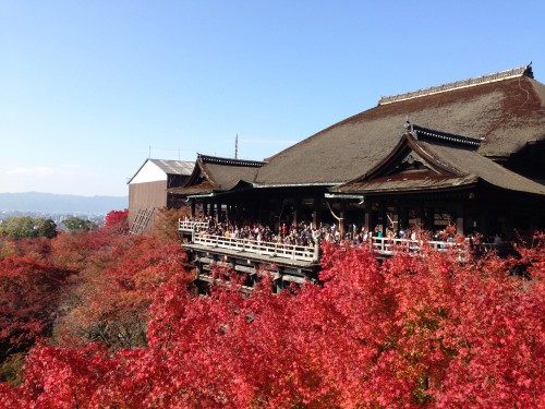日帰り京都紅葉の旅、静岡-京都ドライブ